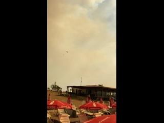 Vídeo de Ala Siomina
