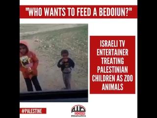 Давайте покормим бедуинов