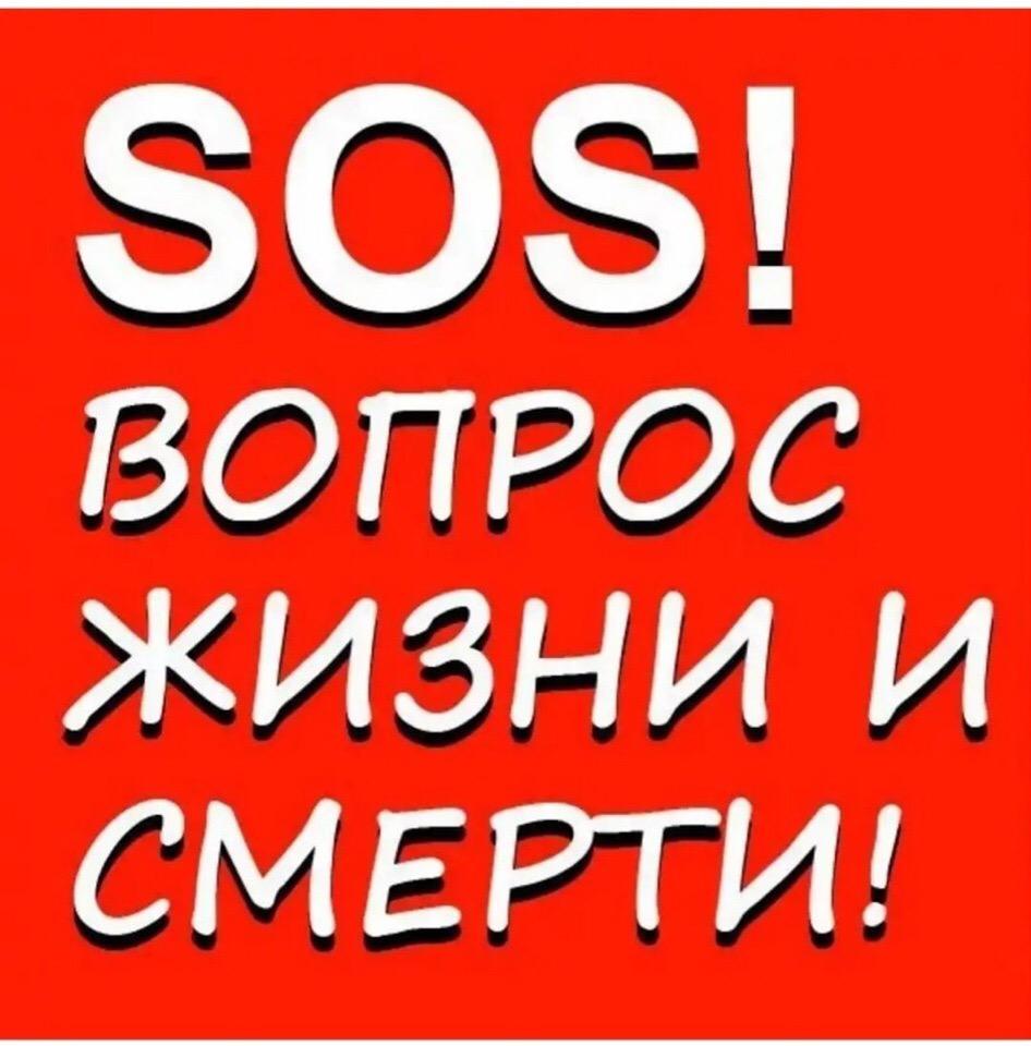 Напишите в группу пожалуйста! SOS! Только что
