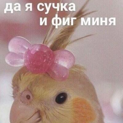 Аня Симёновна