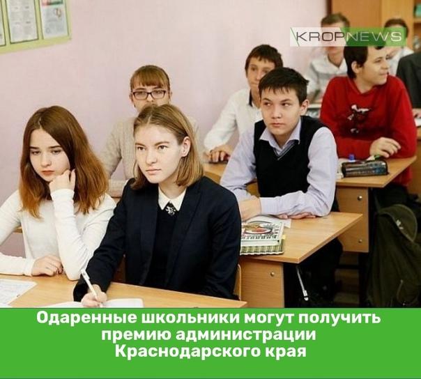 Одаренные школьники могут получить премию админист...