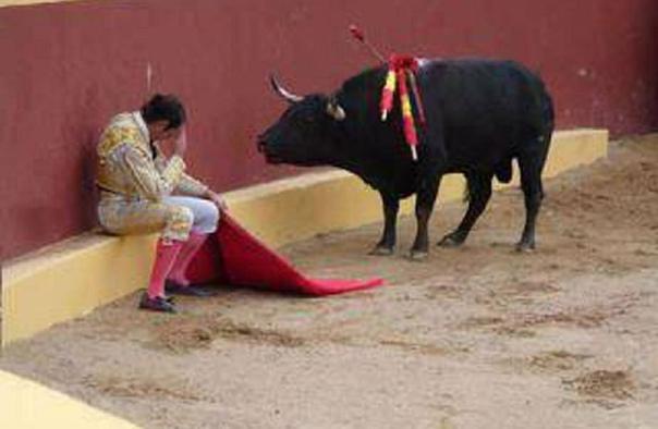 Это невероятное фото, знаменует окончание карьеры матадора, торреро Альваро Мунера