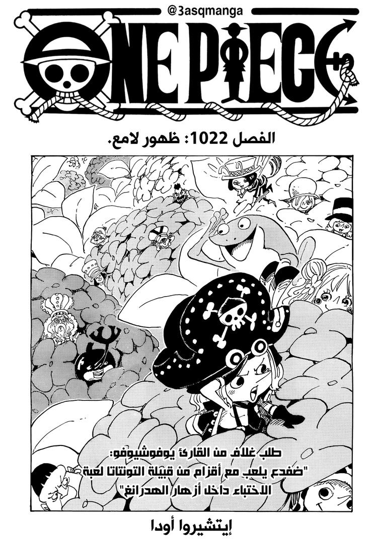 One Piece Arab 1022, image №1