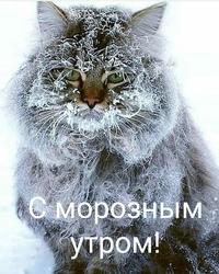 Митрунен Гешка Найстеньярви