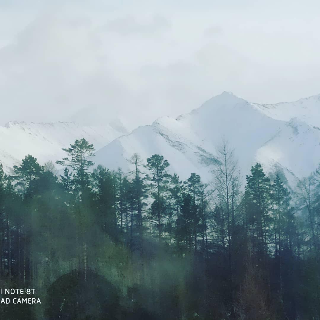 фото из альбома Александра Новикова №9