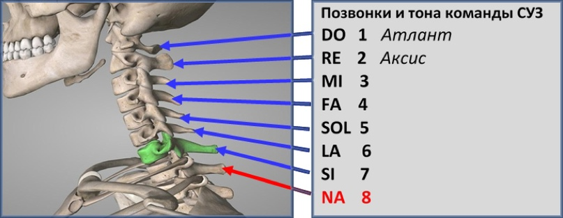 NAстройка русского музыкального ряда — 2 часть, изображение №8