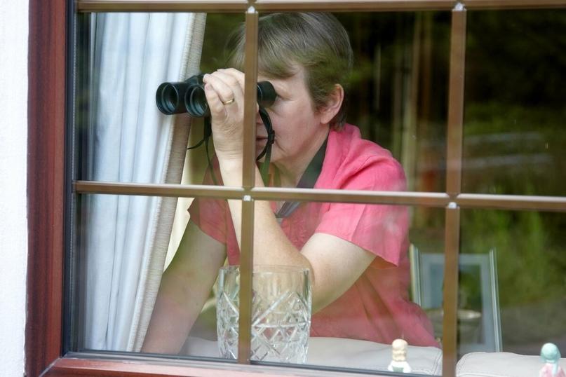 Россиян предупредили о больших штрафах за подглядывание в окна