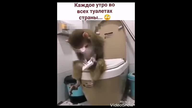 ППК Воскрешение Original Mix