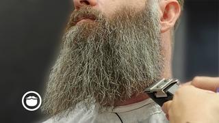 Massive 18 Month Beard Gets Crispy Birthday Trim