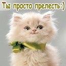 Фотоальбом Лизы Подпругиной