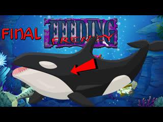 Feeding Frenzy||Часть 5 - Killer-whale Orville