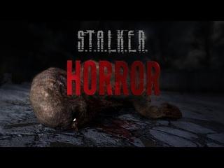 Stalker Horror