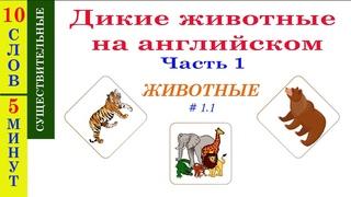 ДИКИЕ ЖИВОТНЫЕ НА АНГЛИЙСКОМ. Часть 1 - Учим название диких животных на английском языке
