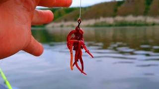 Рыбалка летом  РЫБЫ НАЛОВИЛ!!! НО РЫБАЛКА закончилась ПЛОХО!!!