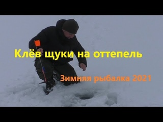 Зимняя Рыбалка 2021. Щука на Жерлицы. Хороший клев на оттепель.