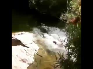 Женская рыбалка. лучшие приколы. смешное видео. юмор