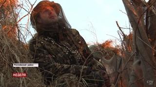 Узнали у профессионалов секреты охоты на птиц