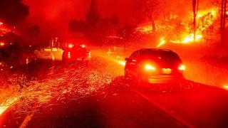 Люди в Греции эвакуируются! По стране распространилось более 150 лесных пожаров_People are evacuated in Greece! Over 150 wildfires spread across the country